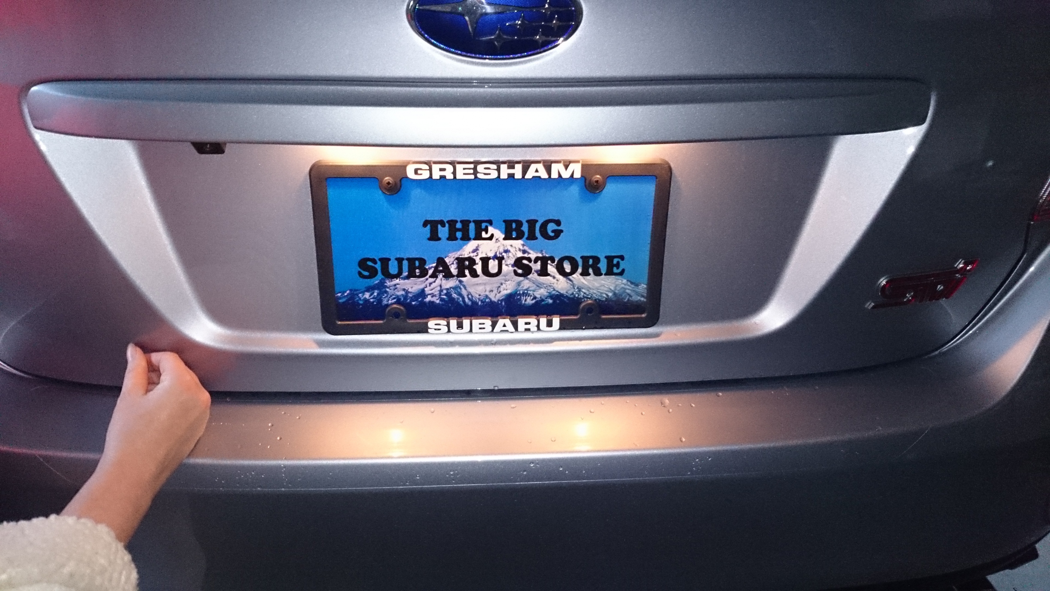 -license-plate-1-jpg